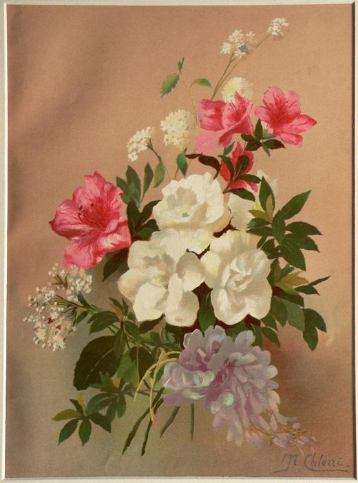 I fiori for Stampe di baite